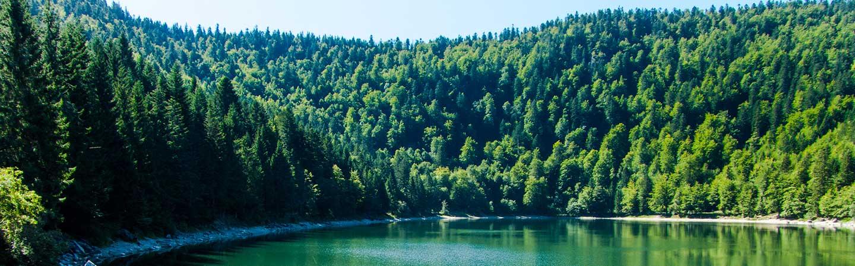Camping du lac de Seigneurie dans les Vosges